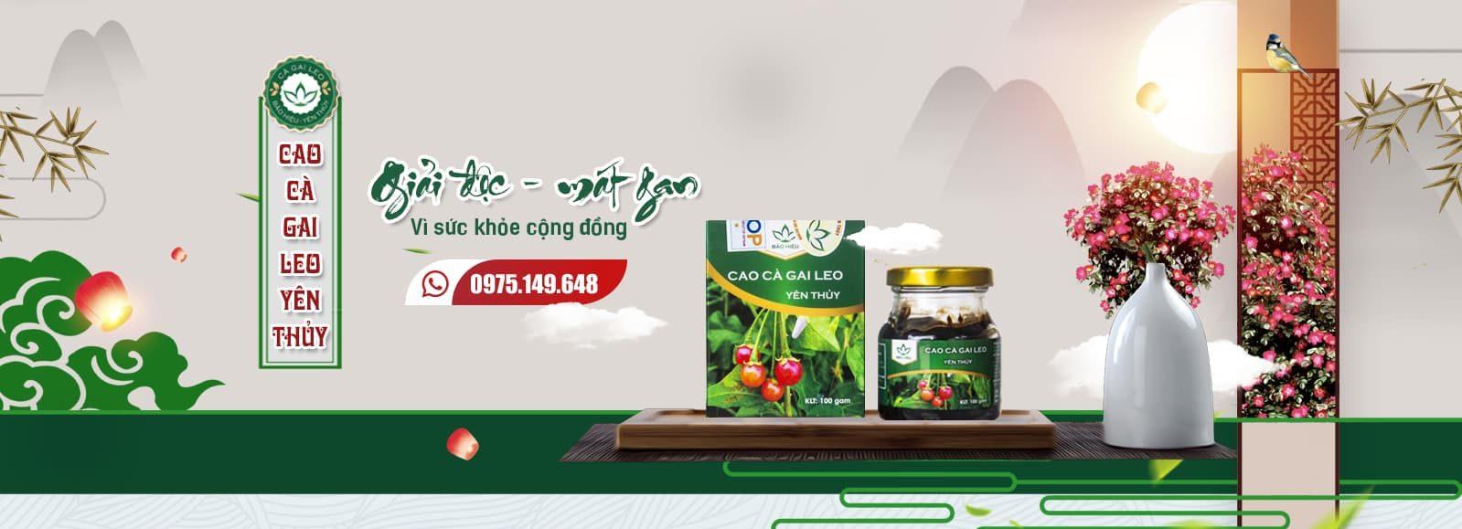 Sản phẩm Cao Cà gai leo Yên Thủy hỗ trợ giải độc gan, mát gan, giải rượu 100gram